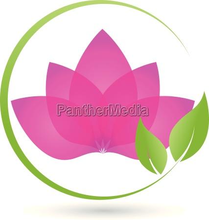 plant leaves logo bio naturopath