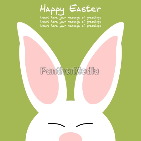 cheerful, and, friendly, colored, rabbit, - - 16324875