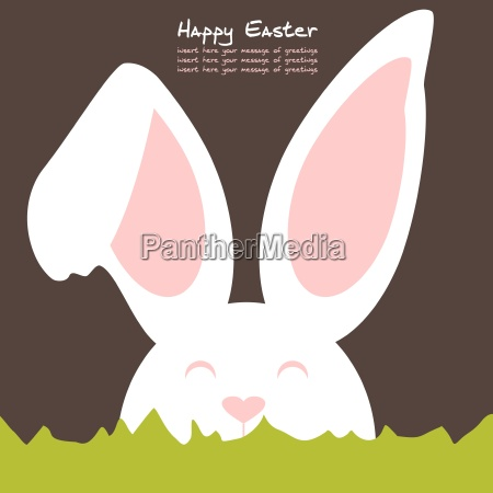 cheerful, and, friendly, colored, rabbit, - - 16325121