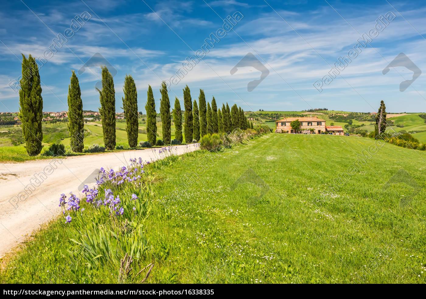 tuscany, at, spring - 16338335