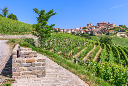small town on hill and vineyards