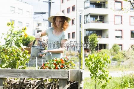 young woman gardening urban gardening raised