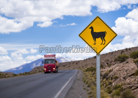 chile lauca national park animal sign