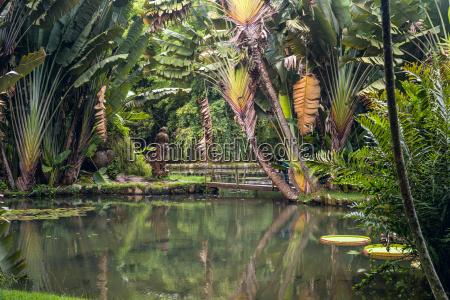 botanical garden of rio de janeiro