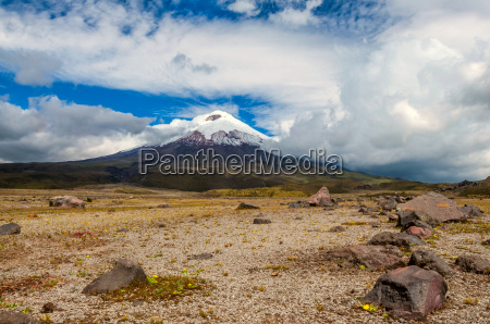 cotopaxi volcano over the plateau andean