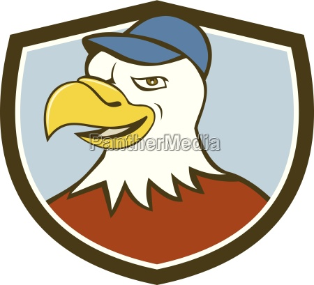 american bald eagle head smiling shield