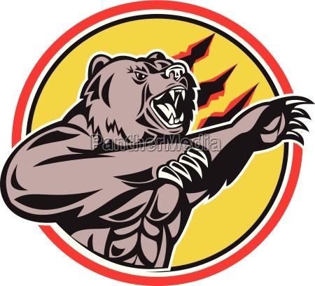 california grizzly bear swiping paw circle