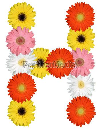 letter h alphabet of flowers cut