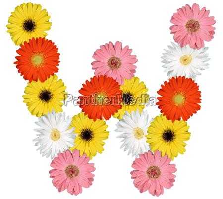 letter w alphabet of flowers cut