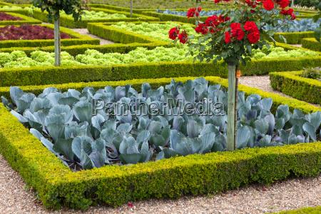 kitchen garden in chateau de