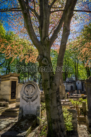 tombstone in a cemetery in the