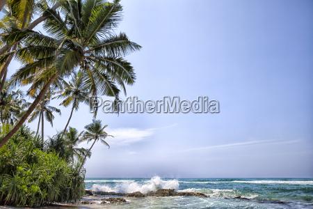 wild waves in the indian ocean