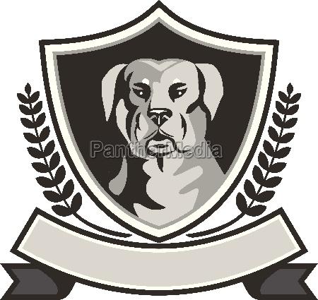 rottweiler head laurel leaves crest black