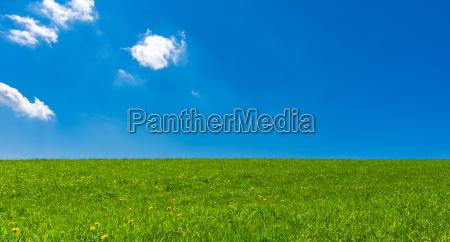 landscape with blue sky
