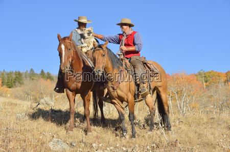 usa wyoming big horn mountains riding