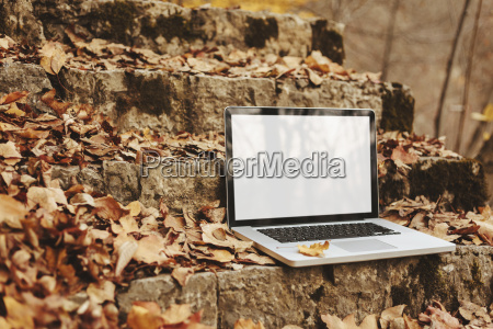 laptop on stone stairs with autumn