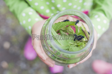 germany girl holding glass with caterpillar