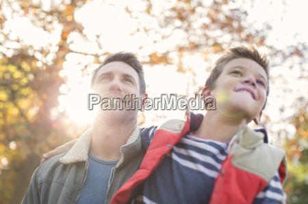 padre en hijo continuacion arbol soleado