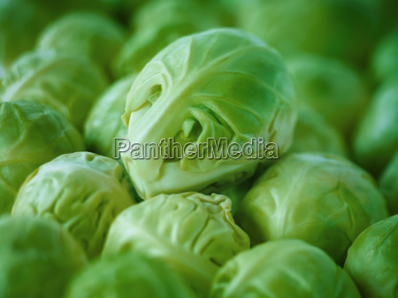 extreme close up of raw brussels