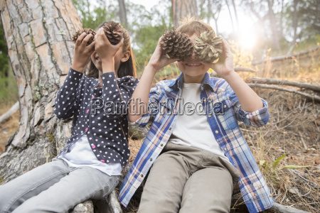 children playing with pine cones in