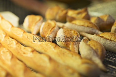 close up of fresh bread in