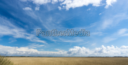 panorama of a nature reserve with