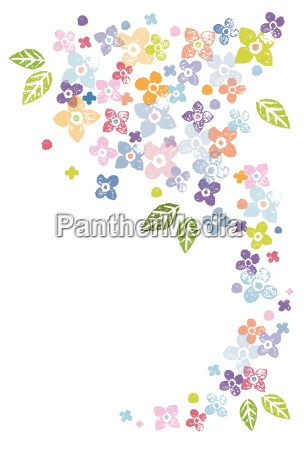 colorful floral greeting card illustration