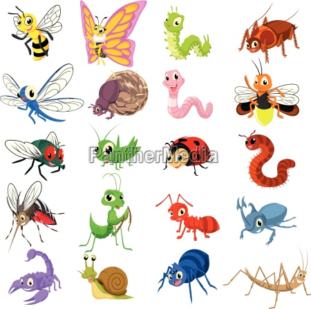 set of insect cartoon character flat