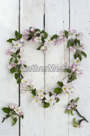 wreath shaped of apple blossoms on