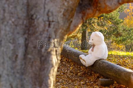 white teddy bear sitting on dead