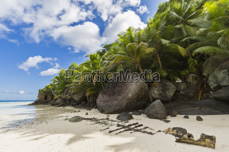 seychelles pointe varreur remains of