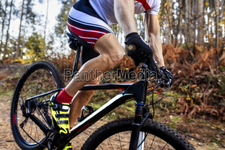 mountain biker driving in the forest