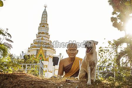 thailand phuket view to nai harn