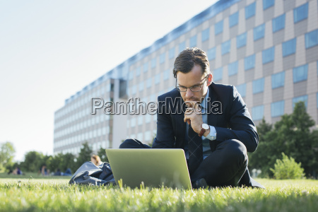 businessman sitting on meadow using laptop