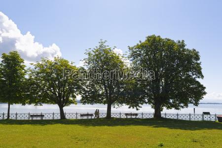 germany friedrichshafen lake constance promenade