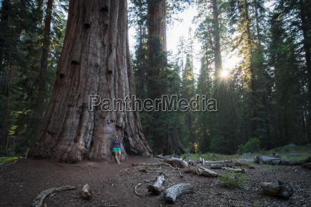 usa california sequoia national park woman