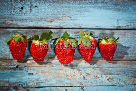 row of five strawberries on blue