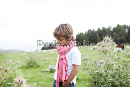 spain cerdanya little boy with pink