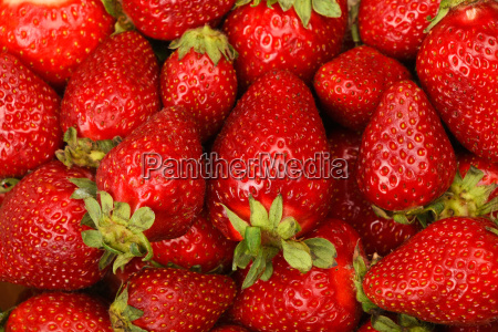 mellow red strawberries background close up