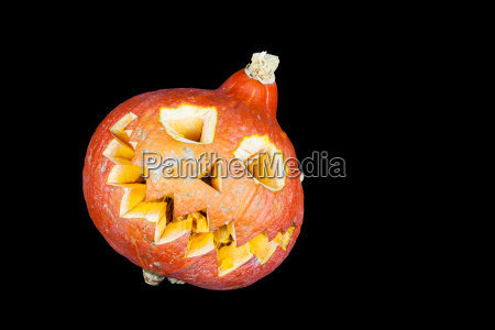 halloween pumpkin with black background