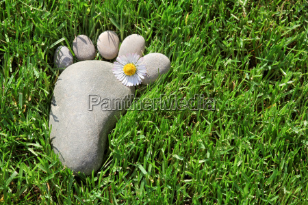 footprint in the grass