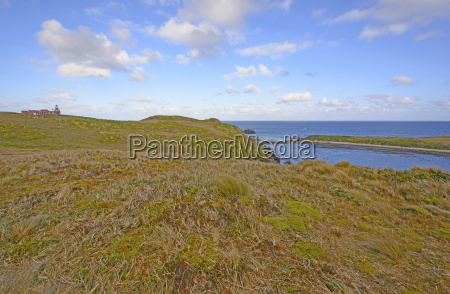 lighthouse and grassland at the end