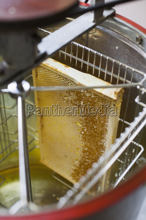 high angle view of honeycomb in