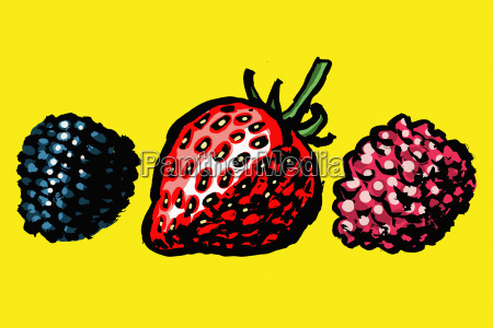 illustration of berries against yellow background