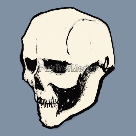 illustration of human skull against purple