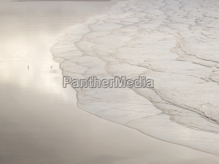 man walking dog on deserted beach