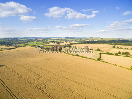 scenic aerial landscape view of golden