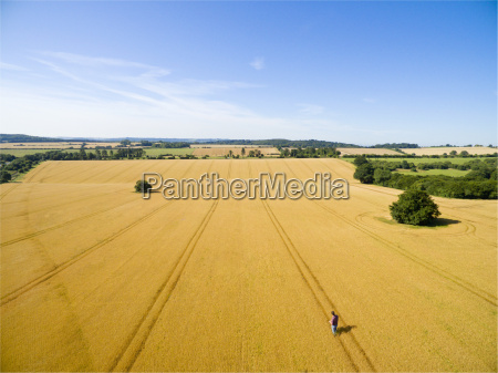 aerial landscape view of farmer standing