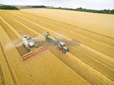 aerial view of combine harvester filling