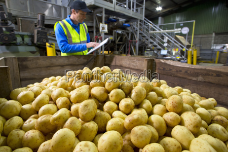 worker with clipboard at bin of